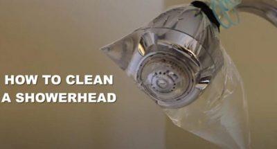 eliminar cal alcachofa de ducha